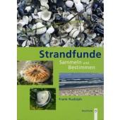 Strandfunde - Sammeln und Bestimmen