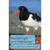Wasservögel und Strandvögel - Arten der Küsten und Feuchtgebiete
