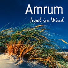 Amrum-Insel im Wind